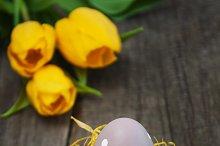 Easter egg in the nest