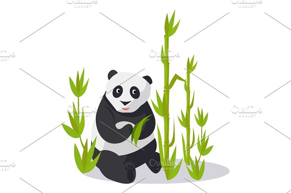 Panda Sitting between Bamboo Holds Green Leaves