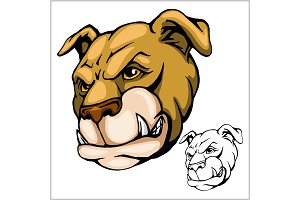 Bulldog Mascot Cartoon Head
