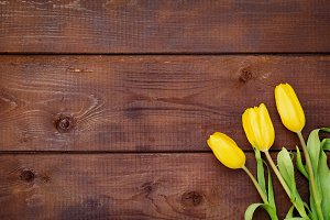 Yellow tulips over wooden background