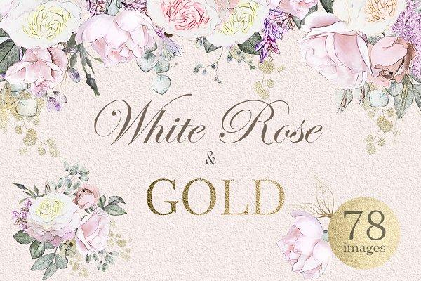 Watercolor floral design set. Rose