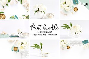 Mint styled stock photo BUNDLE