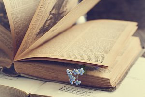 Vintage books and summer flowers
