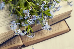 Summer flowers and vintage books