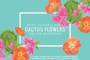 Cactus Flowers Graphic Kit