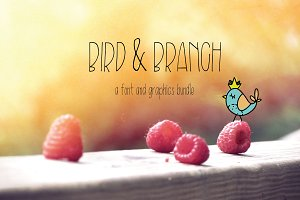 Bird & Branch Font/Graphics Bundle