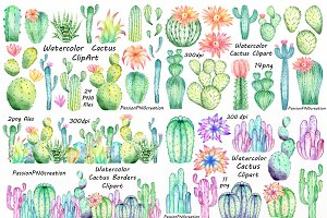 Big set of Watercolor Cactus Clipart