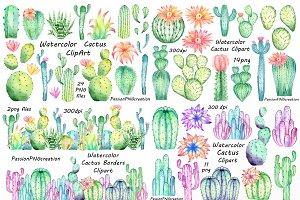 Big set of Watercolor Cactus Clipart