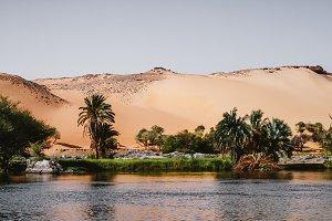 Nile River shore