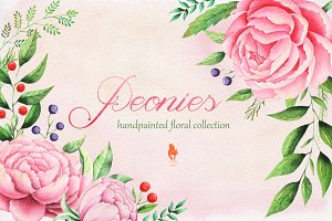 Peonies, Watercolor collection