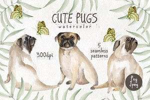 Cute pugs. Watercolor