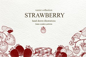 Strawberry Vector Collection