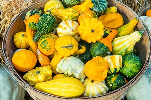 Basket of decorative gourds