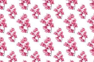Santa Rita Flowers Pattern