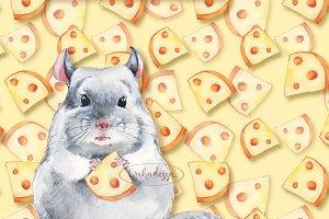 Chinchilla and cheese pattern