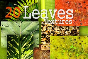 20 Leaves Textures Background Pack