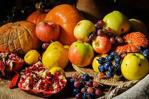 Still harvest festival