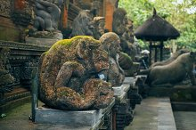 Buddhist temple in tropical jungle of the Sacred Monkey Forest Sanctuary with ancient oriental demon sculpture of Hondu culture, Ubud region, Bali island, Indonesia. Asia landmark
