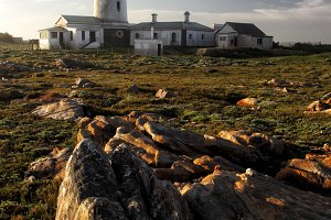 Seal Point Lighthouse in Cape St. Francis, South Africa