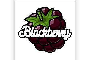 Color vintage fruit emblem