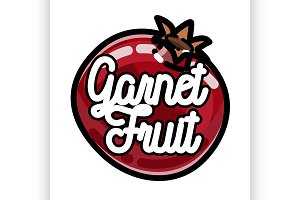 Color vintage fruit emblem