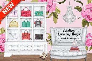 Ladies Luxury Bags walk-in closet