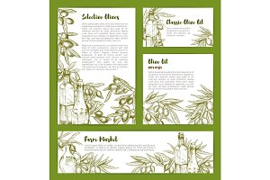 Olive oil vector product poster sketch templates