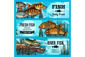 Fresh fish vector sketch banners for market