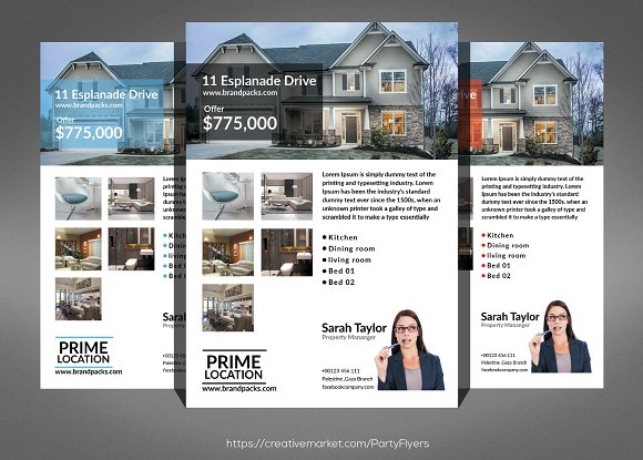 Interior Design Flexible Flyer