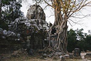 Temple, Angkor, Cambodia