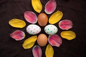 eggs and petals