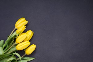 Floral frame with yellow tulips