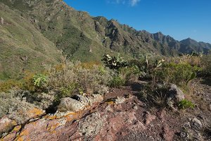 Volcanic landscape in Tenerife.