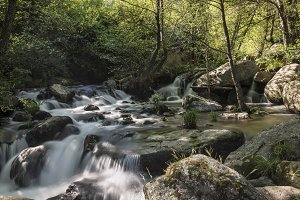Mountain river with cascades
