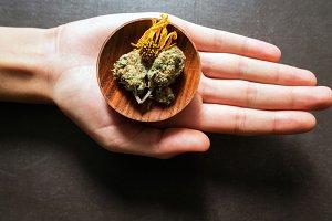 Cannabis in Hand