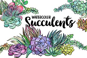 20 Watercolor Succulents