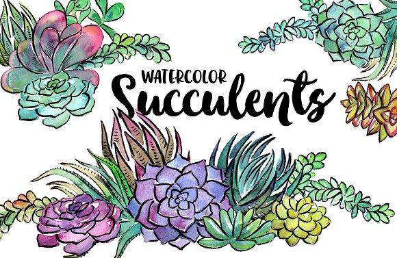 20 Watercolor Succulents