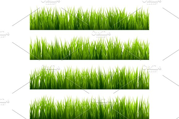 Grass Isolated On White Set Green Meadow Nature Background Spring Summer Time