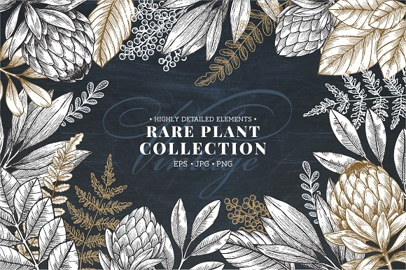 Rare Plant Collection