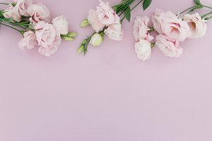 Styled Stock Photo Flower Border