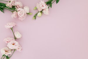 Stock Photo Flower Border