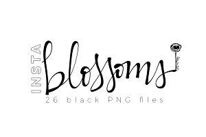 InstaBlossoms