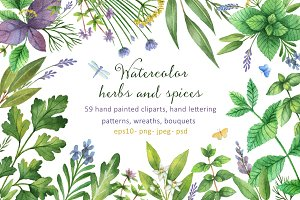 Watercolor herbs and spices
