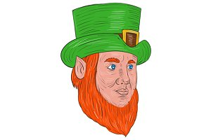 Leprechaun Head Three Quarter