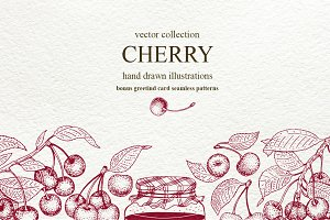 Cherry Vector Collection