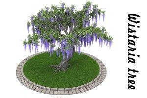 Wistaria tree