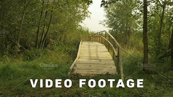 Wooden Bridge In The National Wildlife Swamp Reserve