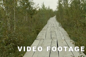 Wooden ecotrail in the national park reserve. Autumn daytime. Smooth dolly shot