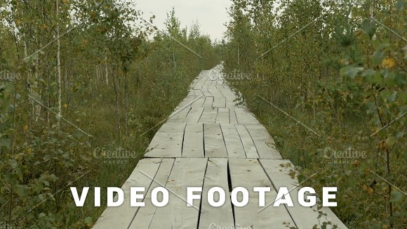Wooden Ecotrail In The National Park Reserve Autumn Daytime Smooth Dolly Shot