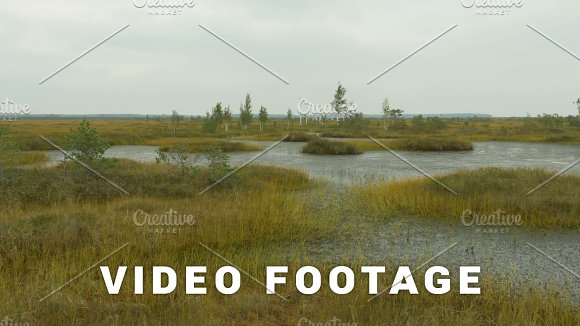 Islands In The Swamp Autumn Daytime Smooth Dolly Shot